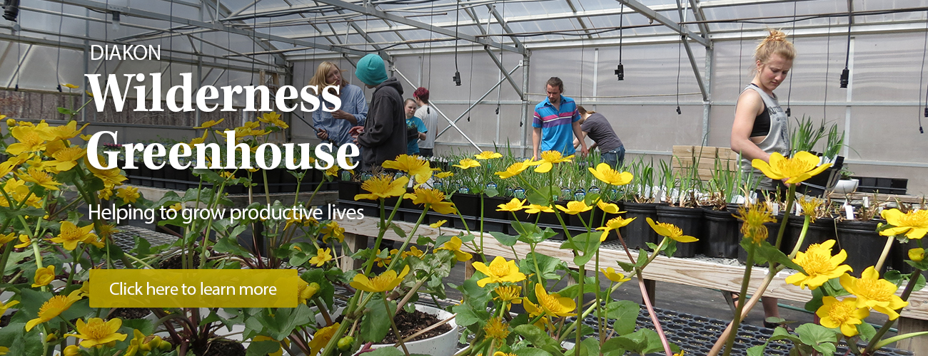 Diakon Wilderness Greenhouse